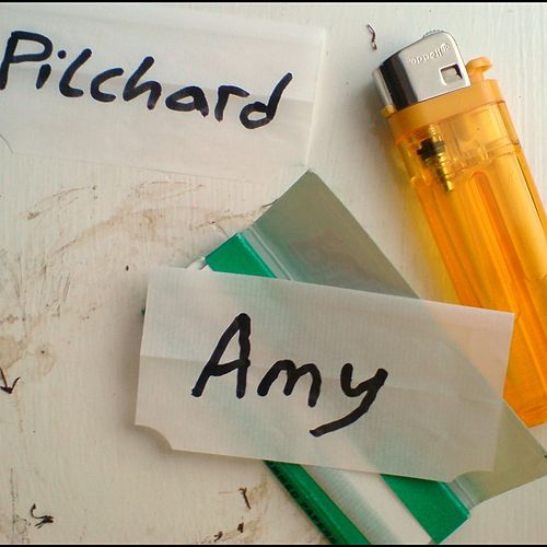 Amy by Pilchard