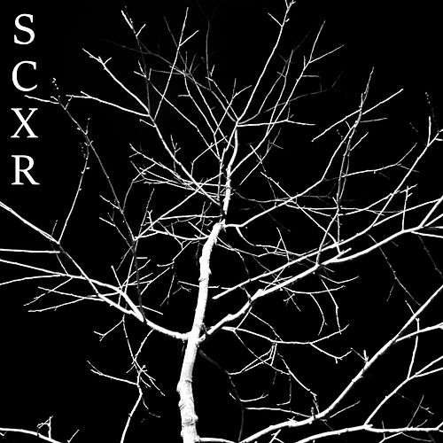 Scxr by Andy C