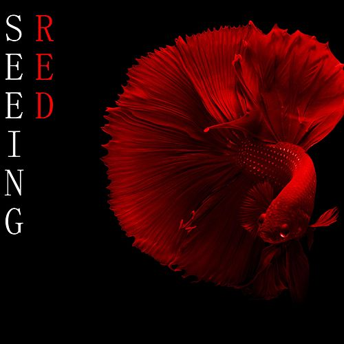 Seeing RED de Andy C
