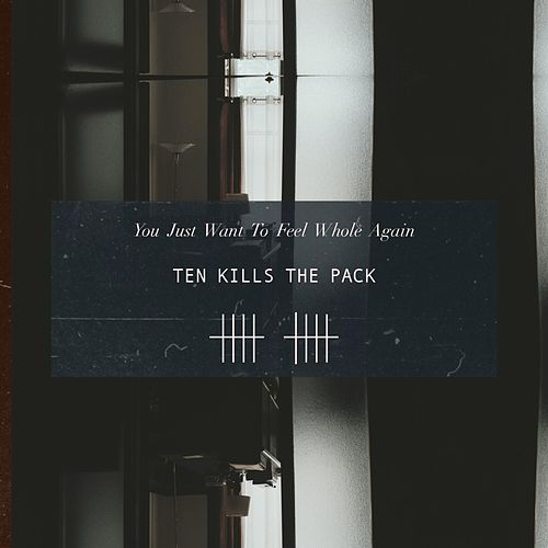 You Just Want to Feel Whole Again by Ten Kills the Pack