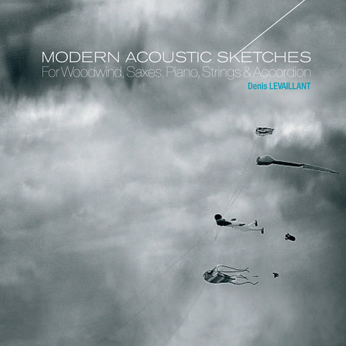 Modern Acoustic Sketches by Denis Levaillant