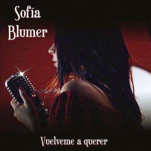 Vuélveme a Querer de Sofia Blumer