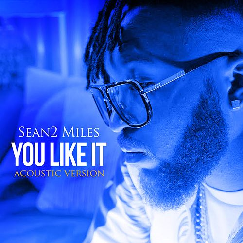 You Like It (Acoustic) by Sean2 Miles