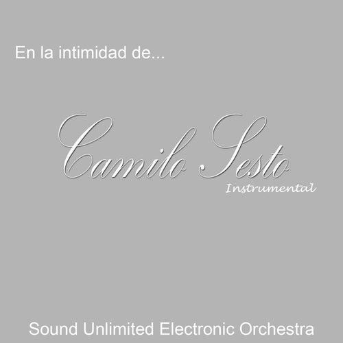 En la Intimidad de Camilo Sesto de Sound Unlimited electronic Orchestra