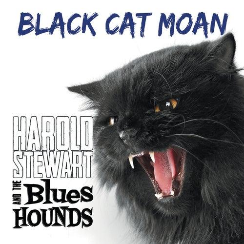 Black Cat Moan von Harold Stewart