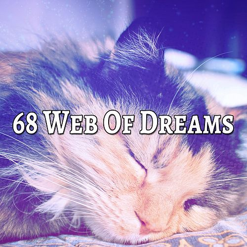 68 Web Of Dreams von Best Relaxing SPA Music