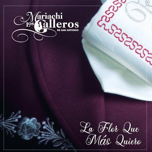 La Flor Que Más Quiero by Mariachi los Galleros de San Antonio