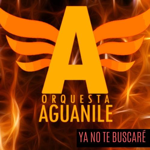 Ya No Te Buscaré von Orquesta Aguanile