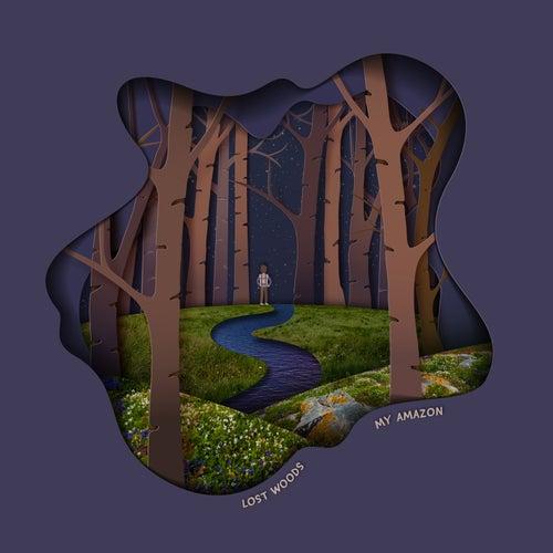 My Amazon de The Lost Woods