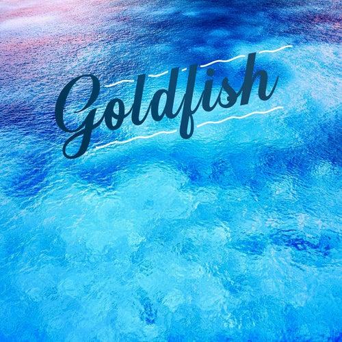 Goldfish by Goldfish