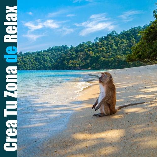 Crea Tu Zona de Relax: La Mejor Música de Fondo para la Relajación, Viaje Zen a la Calma, Mejor Dormir de Various Artists