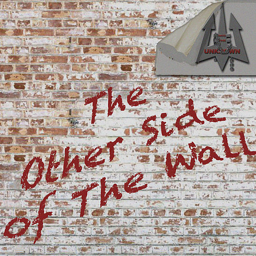 The Other Side of the Wall von Into The Unknown