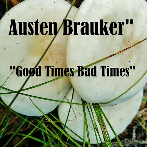 Good Times Bad Times by Austen Brauker