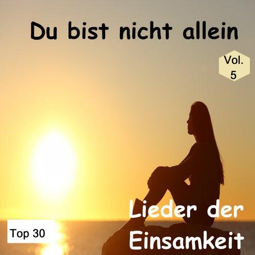 Top 30: Du bist nicht allein - Lieder der Einsamkeit, Vol. 5 by Various Artists
