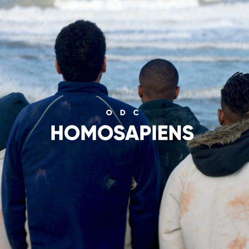 Homosapiens de L'Or du Commun