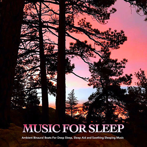 Music For Sleep: Ambient Binaural Beats For Deep Sleep, Sleep Aid and Soothing Sleeping Music de Binaural Beats Sleep