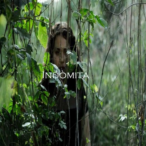 Indómita von Elha De Fato