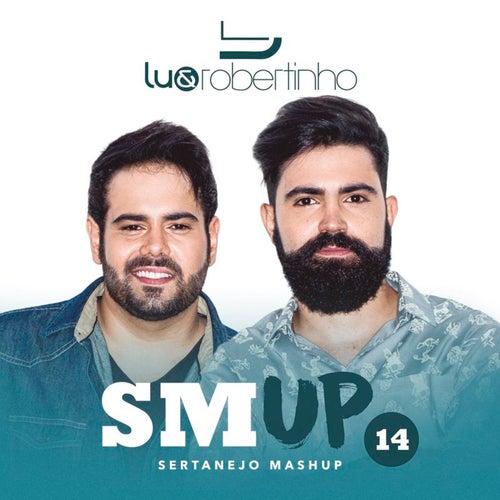 Sertanejo Mashup 14 de Lu & Robertinho