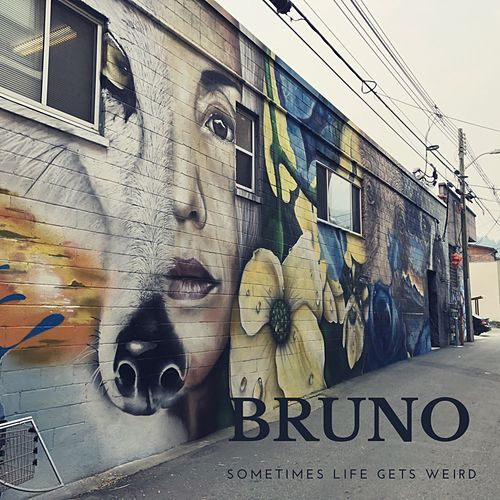 Sometimes Life Gets Weird by Bruno