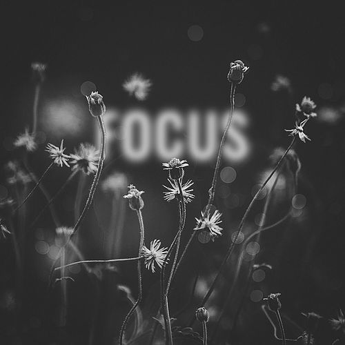 Focus by Deorro