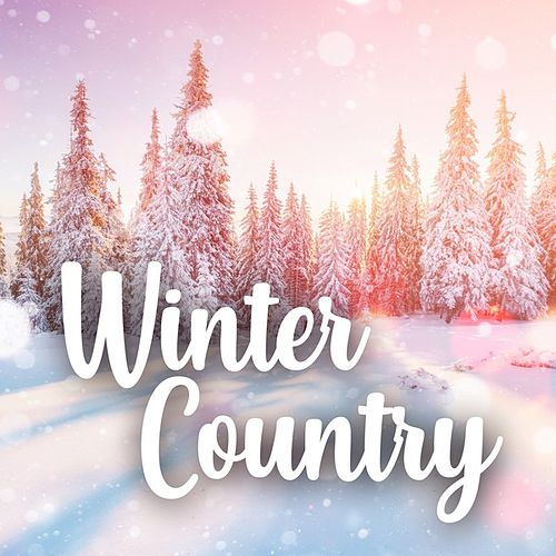 Winter Country von Various Artists