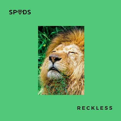 Reckless by Spuds