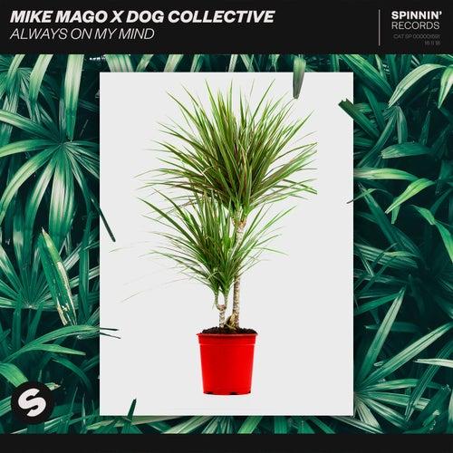 Always On My Mind von Mike Mago