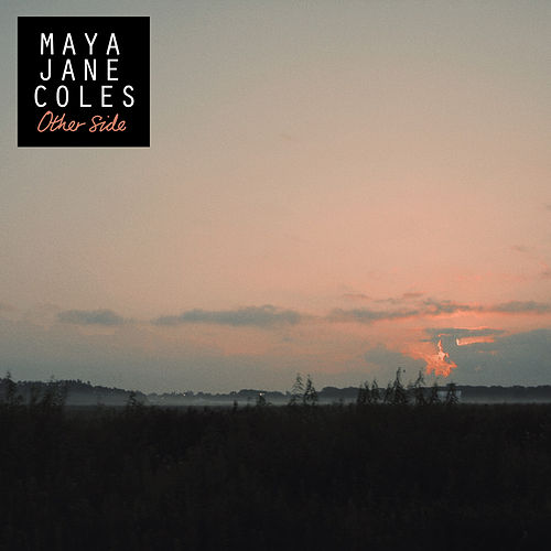 Other Side de Maya Jane Coles