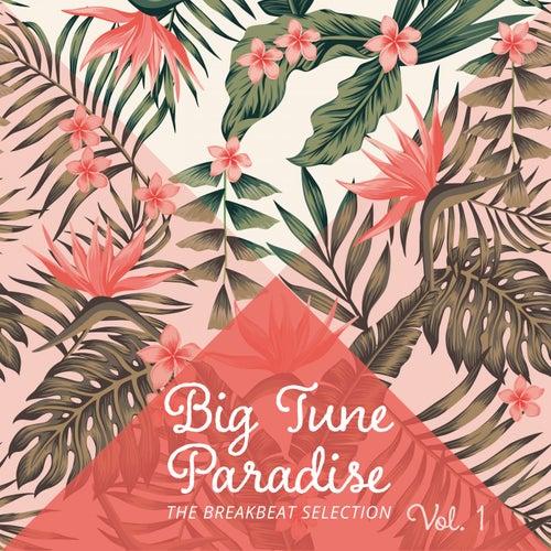 Big Tune Paradise - The Breakbeat Selection, Vol. 1 de Various Artists