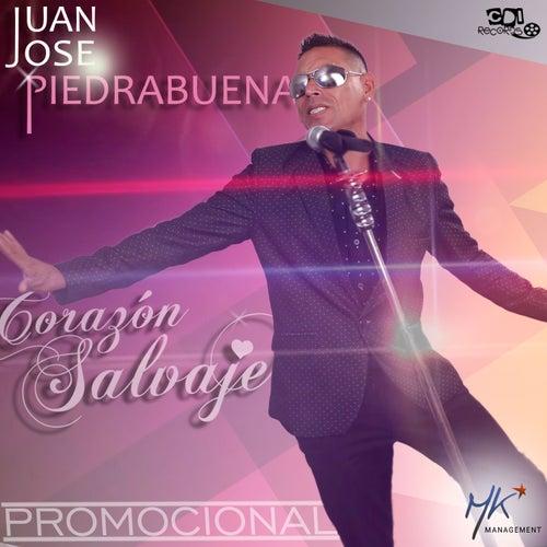 Corazón Salvaje (Promocional) de Juan José Piedrabuena