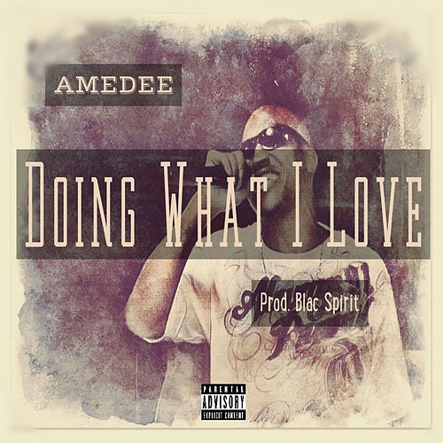Doing What I Love by Amedee