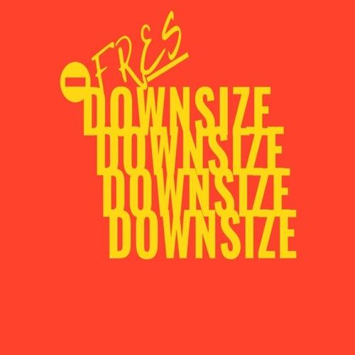 Downsize von Fres(co.)
