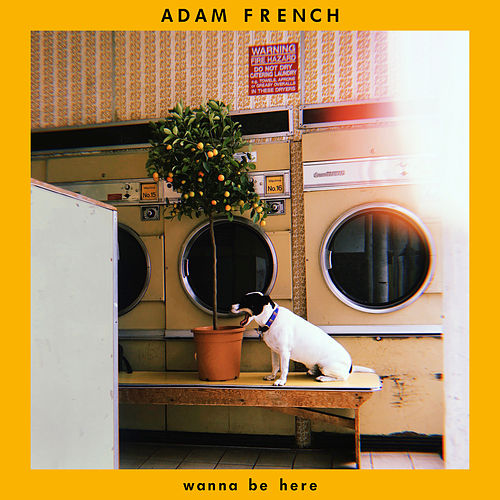 Wanna Be Here by Adam French