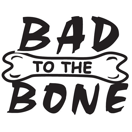 Bad To The Bone by Lil Flipper