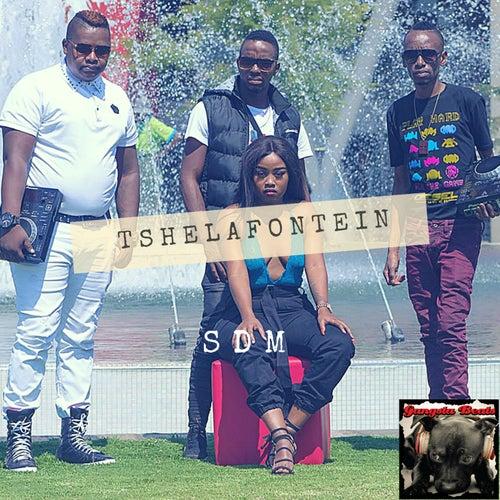 Tshelafontein by SDM