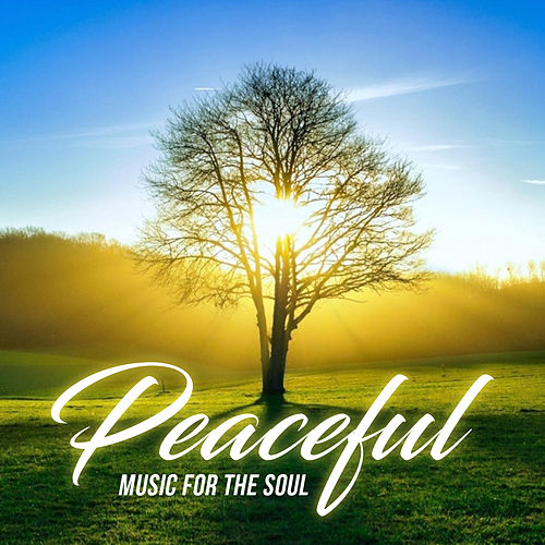 Peaceful (Music For The Soul) by Various Artists
