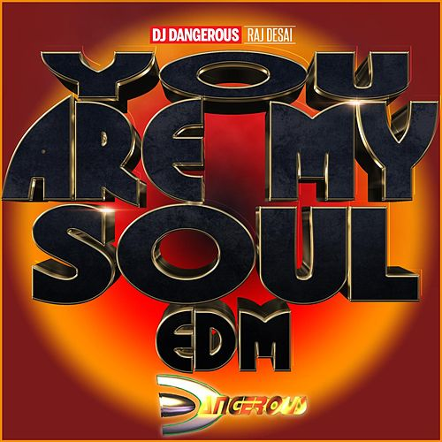 You Are My Soul EDM de DJ Dangerous Raj Desai