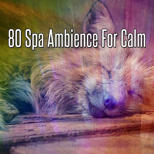 80 Spa Ambience For Calm von Best Relaxing SPA Music
