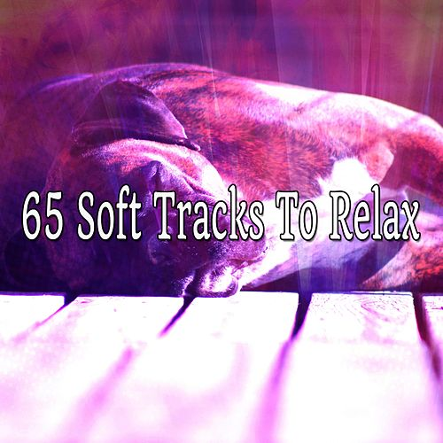 65 Soft Tracks To Relax by Relaxing Spa Music