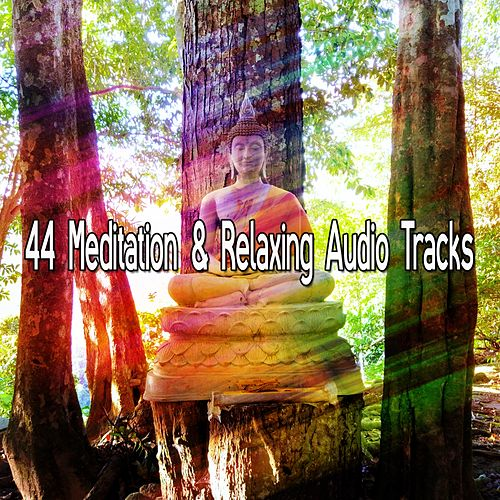 44 Meditation & Relaxing Audio Tracks von Yoga Music