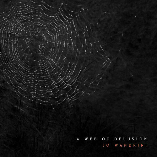A Web Of Delusion de Jo Wandrini