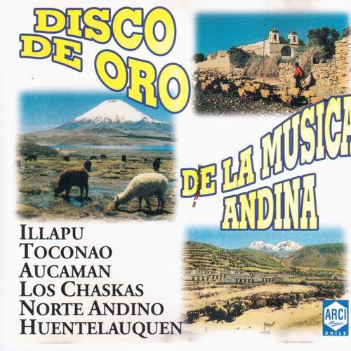Disco De Oro De La Música Andina de Various Artists