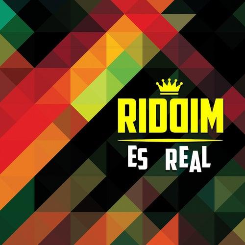 Es Real by Riddim