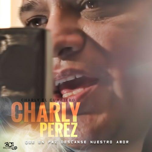 Que en paz descanse nuestro amor de Charly El Cumbiero