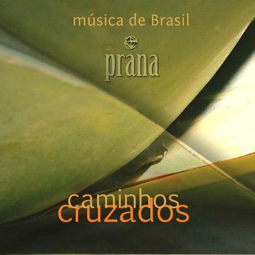 Caminhos Cruzados by Prana