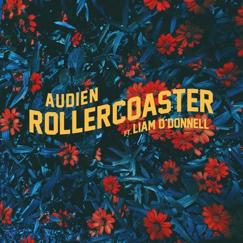 Rollercoaster von Audien