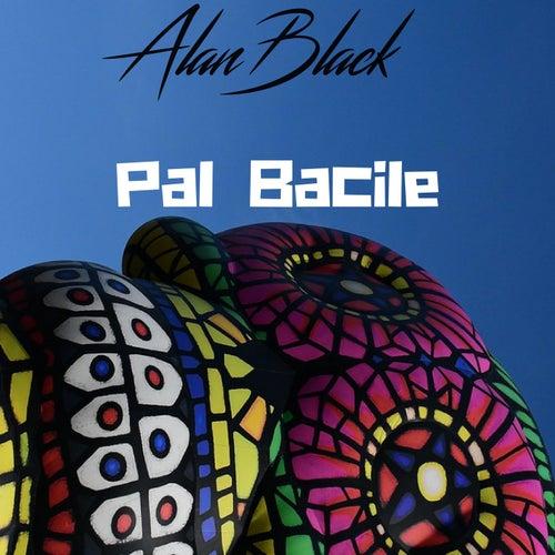 Pal Bacile by Alan Black