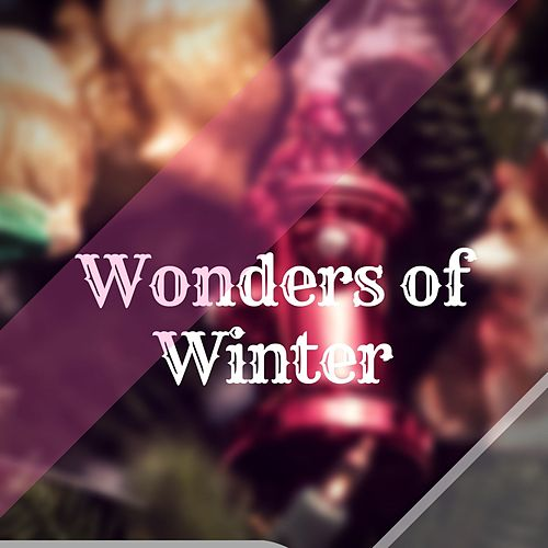 Wonders of Winter by Dr Rahul Vaghela