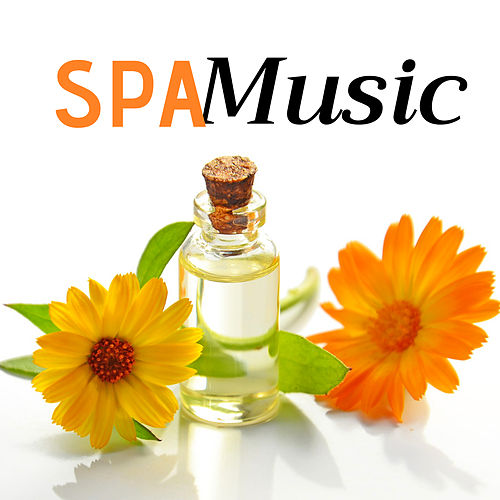 2 Hours of Spa Music with Water Sounds von Best Relaxing SPA Music