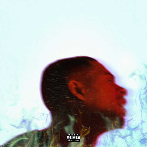 Platinum Fire (Deluxe) by Arin Ray